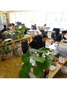 オフィスの様子です!緑がいっぱい!