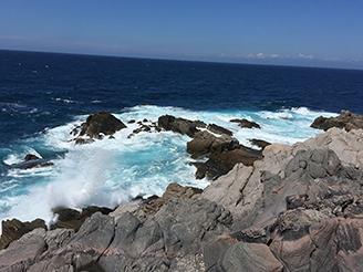今年は社員全員で神津島へ研修旅行!
