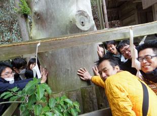社員旅行での一コマ。会社の発展を夢見て、みんなで御神木に願掛けです!