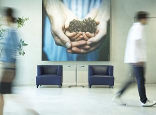 エントランスやオフィスなど、いたるところに高品質な写真が飾られています。