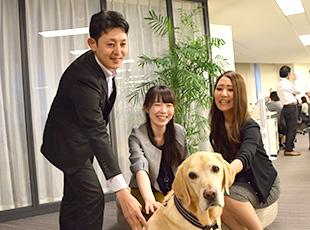 東京本社には、広報犬もおり、皆が笑顔で働けるよう、サポートしてくれています。