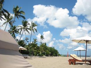 様々な各種旅行商品を提案している、急成長中の当社です。